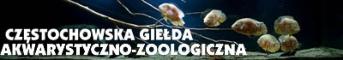 Cz�stochowska Gie�da Akwarystyczno Zoologiczna